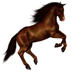 Chinese Zodiac Sign showing Horse